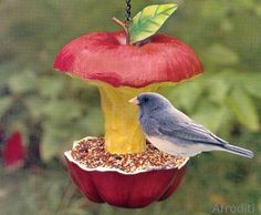 comida pro passarinho