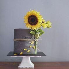 Gray cake with sunflower made with Satin Ice Cake Decorating Designs, Wilton Cake Decorating, Cake Decorating Techniques, Cake Designs, Sunflower Birthday Cakes, Sunflower Party, Sunflower Cakes, Cake Icing, Buttercream Cake