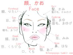 Japanese face vocabulary