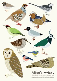 """A lovely print by Alice Melvin titled """"Alice's Aviary"""" for those of us who love birds."""