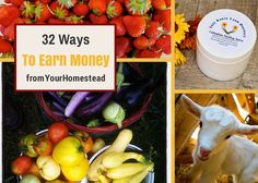 32 ways to earn money from your homestead - A homesteading lifestyle leans itself nicely to work-from-home opportunities.
