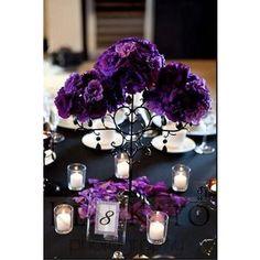 Wedding, Flowers, Reception, White, Purple, Ceremony, Black ...