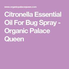 Citronella Essential Oil For Bug Spray - Organic Palace Queen Bed Bugs Essential Oils, Essential Oil Spray, Best Essential Oils, Essential Oil Blends, Pure Essential, Cedarwood Oil For Hair, Doterra, Queen, Bug Spray Recipe