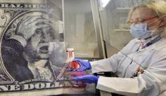 ¿Qué bacterias hay en los billetes de dólar y qué enfermedades provocan?