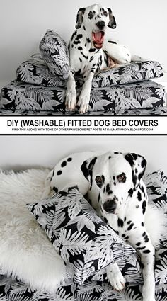 DIY Dog Beds | Removable, washable, fitted, water proof/resistant dog bed covers. A great way to customise the look of you dog beds to work with your home decor whilst being practical and comfortable, too! Diy Dog Bed, Diy Bed, Comfy Dog Bed, Sewing For Dummies, Bed Cushions, Diy Stuffed Animals, Bed Covers, Your Dog, Dog Lovers