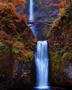 Multnomah Falls - but you aren't getting me to cross that bridge.. NO WAY, NO HOW!! lol!