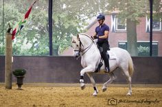 Trot by Bas de Recht and pré stallion Lebrero. Picture made by HUiterwaalFotografie