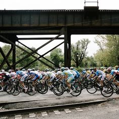 World Championships Richmond 2015  Photo @bokanev