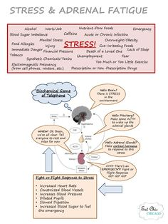 Understanding Stress and Adrenal Fatigue Guide | Eat Chic Chicago | healthy tips + tricks
