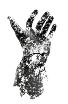 Photoshop by our Designer Team Double Exposure Photography, Hand Photography, Photoshop Photography, Creative Photography, White Photography, Photography Classes, Photography Hashtags, Photography 2017, Levitation Photography