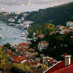 Istanbul ❁✦⊱❊⊰✦❁ ڿڰۣ❁ ℓα-ℓα-ℓα вσηηє νιє ♡༺✿༻♡·✳︎·❀‿ ❀♥❃ ~*~ TH Jun 30, 2016 ✨вℓυє мσση ✤ॐ ✧⚜✧ ❦♥⭐♢∘❃♦♡❊ ~*~ нανє α ηι¢є ∂αу ❊ღ༺✿༻♡♥♫~*~ ♪ ♥✫❁✦⊱❊⊰✦❁ ஜℓvஜ