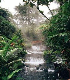 Top 10 Costa Rica Experiences for your Bucket List
