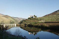 Espelho na foz do rio Tedo, Armamar