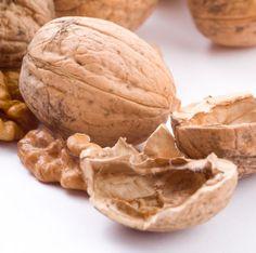 BioCulinária: Leites Vegetais – Alternativa Saudável e Saborosa