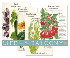 Life on the Balcony - Starting Seeds 101.