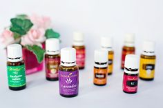 Young Living is the World Leader in Essential Oils. Young Living Essential Oils (YLEO) only incorporates the highest purity in grade for all of our health products. Essential Oil For Sunburn, Essential Oils For Pregnancy, Essential Oil Brands, Thieves Essential Oil, Essential Oils Guide, Essential Oils Cleaning, Essential Oil Uses, Young Living Essential Oils, Sunburn Relief