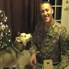 WOOF WATCH: Dogs Reunite With Military Owners |  #WOOFipedia by The American Kennel Club #WOOF