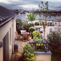 private garden. ▲ terrasse au plessis robinson ▲ griottes