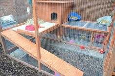 Rabbit+Runs | Rabbit Hutch/run plans/pics/ideas for 2 rabbits that don't get along ...