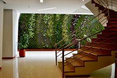 Muros verdes patente Ignacio Solano Hotel Cosmos 100