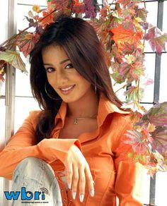 Bollywood Actress Amrita Rao Amrita Rao started her career with Shahid Kapoor's 'Ishq Vishq' way back in and subsequently did a couple of successful films such as 'Main Hoon Na' with Shah Rukh Khan, 'Deewar' and Sooraj Barjatya's 'Vivaah'. Bollywood Photos, Bollywood Saree, Bollywood Celebrities, Freida Pinto, Amrita Rao, Indian Goddess, Beautiful Bollywood Actress, Hair Color And Cut, Indian Beauty