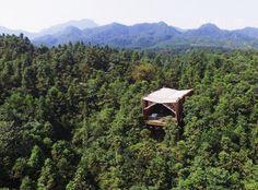 """Treehouse M"" byAndong Lu e Pingping Dou (LanD Studio)"