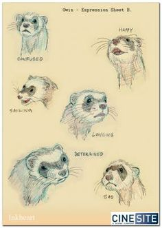 Luise (art by alex-williams) Art Reference Poses, Drawing Reference, Ferret Tattoo, Animal Drawings, Face Drawings, His Dark Materials, Furry Drawing, Alex Williams, Sketches