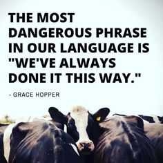 "The most dangerous phrase in our language is ""We've always done it this way."" - Grace Hopper Just because we've always done something, doesn't mean it's right. Great Quotes, Quotes To Live By, Me Quotes, Inspirational Quotes, Qoutes, Mercy For Animals, Vegan Facts, Vegan Quotes, Vegan Memes"