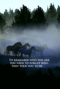 """""""To remember who you are, you need to forget who they told you to be."""""""
