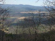 Crooked Arm Ridge Trail