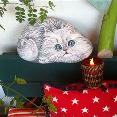 Bugünkü kedicikler balkonda poz verdiler#kedi #cat #taşboyama #stonepaint…