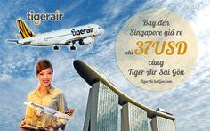 Bay đến Singapore chỉ 37 USD - Đại lý Tiger Air