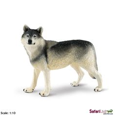 """This is a Grey Wolf Wildlife Wonders Figure produced by Safari. This Grey Wolf animal figure is hand painted and well detailed. It comes from Safari's line of figures that is titled """"Wildlife Wonders. White Wolf, Gray Wolf, Wolf Black, Timber Wolf, Dinosaur Toys, Cute Bears, New Toys, Animal Photography, Wildlife Photography"""