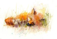 Contemporary Limited edition PRINT of original watercolour painting 'sleeping FOX' original animal art illustration with certificate