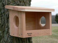 Robin / Phoebe Nestbox