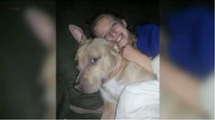 NORWICH, Conn. (PIX11) -- A family's beloved pit bull may have to pay the ultimate price for saving an 11-year-old girl from a rabid raccoon. Tank is serving a 6-month sentence in the Norwich Anima...