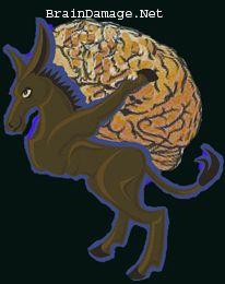 BrainDamage.net @BrainBehaviour  Exploring the relationship between the brain and behaviour Grapevine, Texas · http://www.braindamage.net/