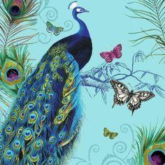 Peacock Seville, Peacocks, New York, Bird, Illustration, Animals, Sevilla, New York City, Animales