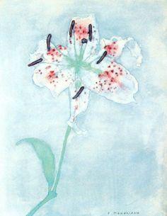 Piet Mondrian (Dutch, 1872-1944), Lily, before 1910. Watercolor on paper,25 x 19.5cm.