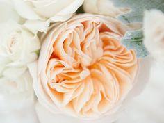 Las 10 mejores flores para decorar: ¡tu boda, tu hogar y tu vida!