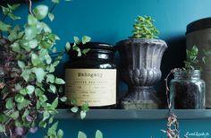 Idées déco : étagères végétales Decoration, Planter Pots, Shades, Sweet, Diy Room Decor, Decor, Candy, Shutters, Decorating
