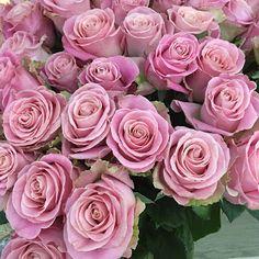 Umut Işığı: Sevgililer Günü Bahane... #blog #blogger #blogyazılarım #UmutIşığı #SevgililerGünüBahane #SibelBaba #SibelOnayBaba