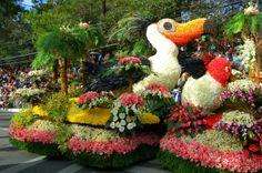 Panagbenga Festival, Baguio City Philippines