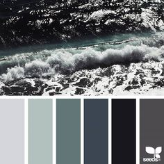 today's inspiration image for { color sea } is by @lbtoma ... thank you, Lina, for sharing your wonderful photo in #SeedsColor !