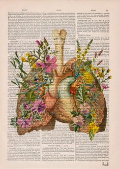Winter Sale 10% off Flowery Lungs and heart human by PRRINT