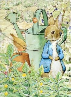 peter rabbit and lily | Peter Rabbit is my Beatrix Potter favorite - but I must admit I love ...