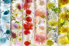 ハーバリウム(浮游花/フユカ)昼間のイメージ07 How To Preserve Flowers, Flower Crafts, Cute Wallpapers, Flower Arrangements, Glass Vase, Diy Jewelry, Interior Decorating, Wedding Decorations, Diy Crafts