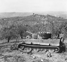 Tiger 1 Possible Italy
