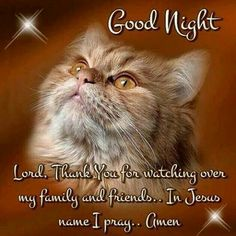 Good Morning Day Night Quotes Pics And Videos. Good Morning Day Night Quotes Pics And Videos Cute Good Night, Good Night Sweet Dreams, Good Night Image, Good Morning Good Night, Day And Night Quotes, Good Night Qoutes, Goodnight Quotes For Friends, My Family Picture, Family Pictures