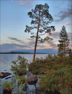 Lappi Inarijärvi